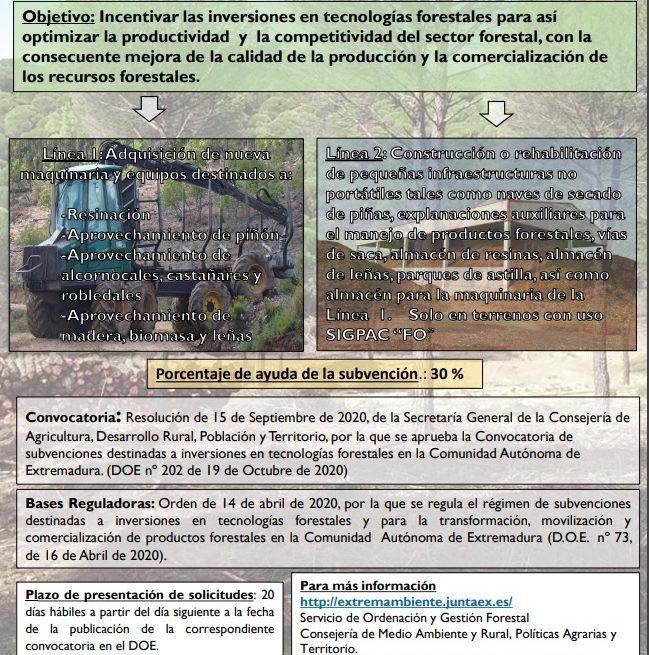 Ayudas del 30% para inversiones en tecnologías forestales