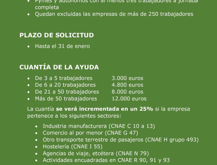 Las ayudas directas a las empresas podrán solicitarse hasta el 31 de enero