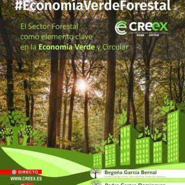 Jornada #EconomiaVerdeForestal (vídeo completo)
