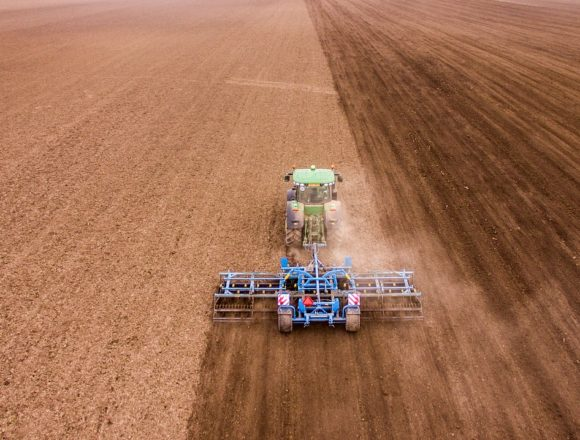 Estructura productiva, situación de partida y ayudas de la Junta, claves para la evolución del paro en Extremadura, según la CREEX