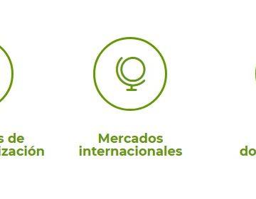 Servicio i-Export de Extremadura Avante para ayudar a las empresas exportadoras